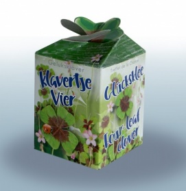 Greengift Lucky four leaf clover