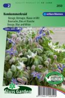 Borage Blue and White (Borago officinalis)