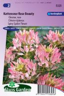 Kattensnor Rose Beauty (Cleome)