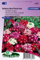 Garden Vervein Ideal Florist mix, compact