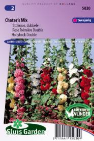 Hollyhock Chater's Strain Mix