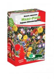 Mixture Japanese Flower Garden (annual) Maxi-Pack