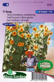 Sunflower Giant tall single F1 Kong yellow
