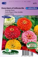Zinnia Giants of California Mix