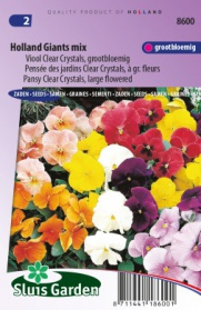Pensée des jardins Clear Crystals, Holland Giants mix