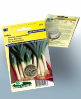 Leek Bluegreen winter Farinto (Winter)