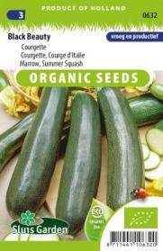 Courgette, Courge d'Italie Black Beauty