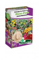 Mixture Annual Summerflowers Semi-dwarf Maxi-Pack