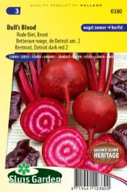 Beetroot, Red Gardenbeet Bull´s Blood