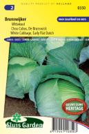 White Cabbage, Early flat Dutch Brunswijker