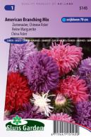 China aster American Branching Mix
