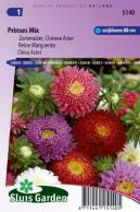 China aster Princess Choice Mix
