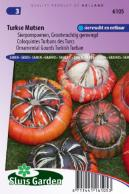 Ornamental Gourd Large Fruited Turkish Turban