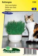 Herbe-aux-chats