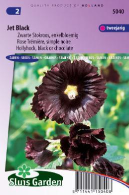 sluis black singles A very distinctive, almost black hollyhock jet black has long flower stalks with numerous silky brownish-black single flowers a biennial that.