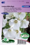 Mallow annual, White Regis