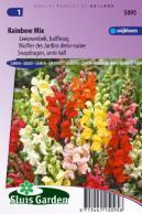 graines de fleurs annuelles produits sluis garden. Black Bedroom Furniture Sets. Home Design Ideas