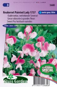 Sweet pea Painted lady,1937 (Heirloom variety)